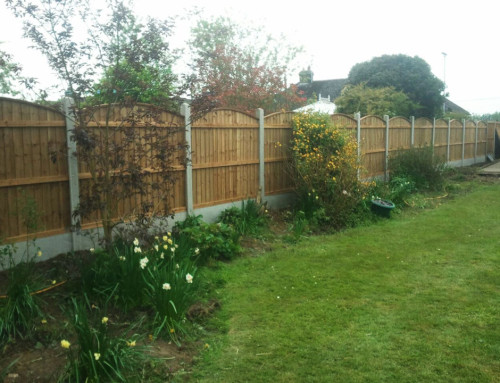 Convex Fence – South Woodham Ferrers