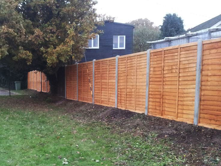 New Fence & Posts