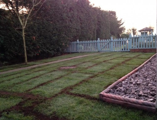 Turf & Slate Flower Bed (Rettendon)